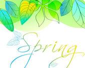 Folhas de primavera linda — Vetorial Stock