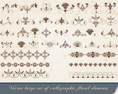 Set of vintage, floral calligraphic design elements — Stock Vector