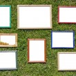 Wooden photo frames on spring lawn — Stockfoto