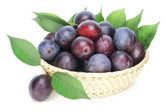 Real isolated ripe red plums — Stock Photo