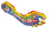 Regenboog voetafdruk geïsoleerd — Stockfoto