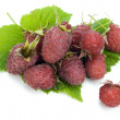 Real garden raspberry berries — Foto de stock #9123098