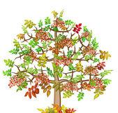 Ash lonely autumn tree — Stock Photo