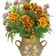 French Marigold in jug - Stock Photo