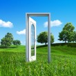 Nature collection - Door to success — Stock Photo