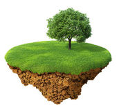 Little fine island - planet. A piece of land in the air. Lawn with a tree. Detailed ground in the base — Stock Photo