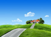 Very detailed 6000px house on green meadow - Nature collection — Stock Photo