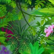 Tropical forest background - Image vectorielle