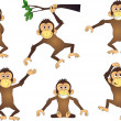 Funny chimpanze — Stock Vector