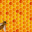 Bee with honeycomb — Image vectorielle