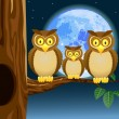 Owl family — Stock Vector #8579470