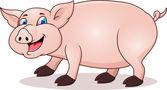 面白い豚漫画 — ストックベクタ