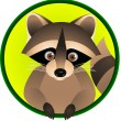 Raccoon Cartoon — Stock Vector