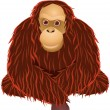 Orangutan cartoon - Stock Vector