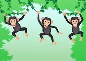 Chimpanzee cartoon — Stock Vector