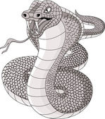 Wütend cobra-cartoon — Stockvektor