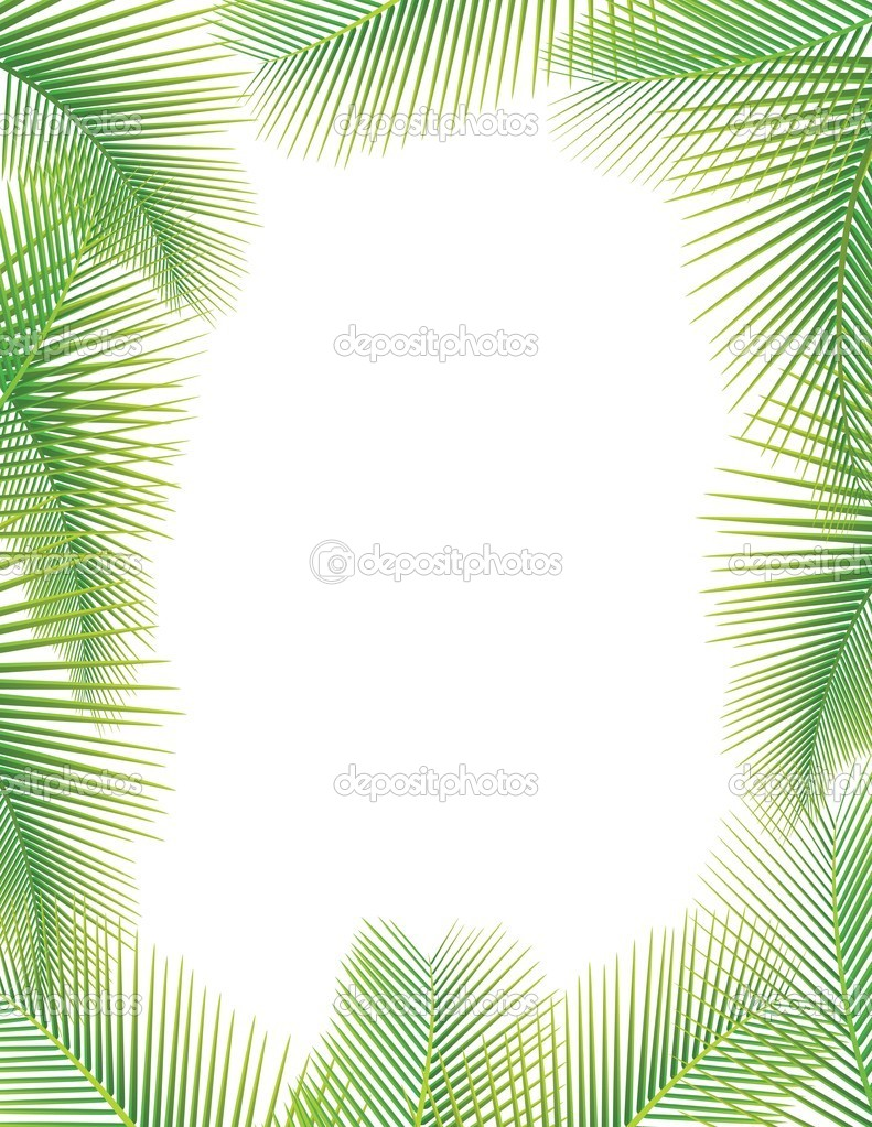 feuilles de palmier sur blanc image vectorielle dagadu 9455181. Black Bedroom Furniture Sets. Home Design Ideas