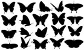 Butterflies — Stockvektor