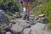 Shoes on trail walking in mountains — Stock Photo