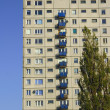 Tree and tower block in Poznan - Stock Photo