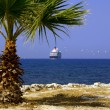 Stock Photo: Cruise liner and palm tree