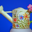 Stock Photo: Painted watering cfrom porcelain
