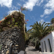 The town of Masca in Teneriffe, Spain — Stockfoto