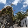 The town of Masca in Teneriffe, Spain — Foto de Stock