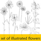 Set of illustrated cute flowers for your spring design — Stock Photo