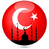 The mosque with the Turkish flag globe.Vector — Stock Vector