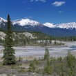 Panoramic view on Canadian Rockies Mountains — Stock Photo