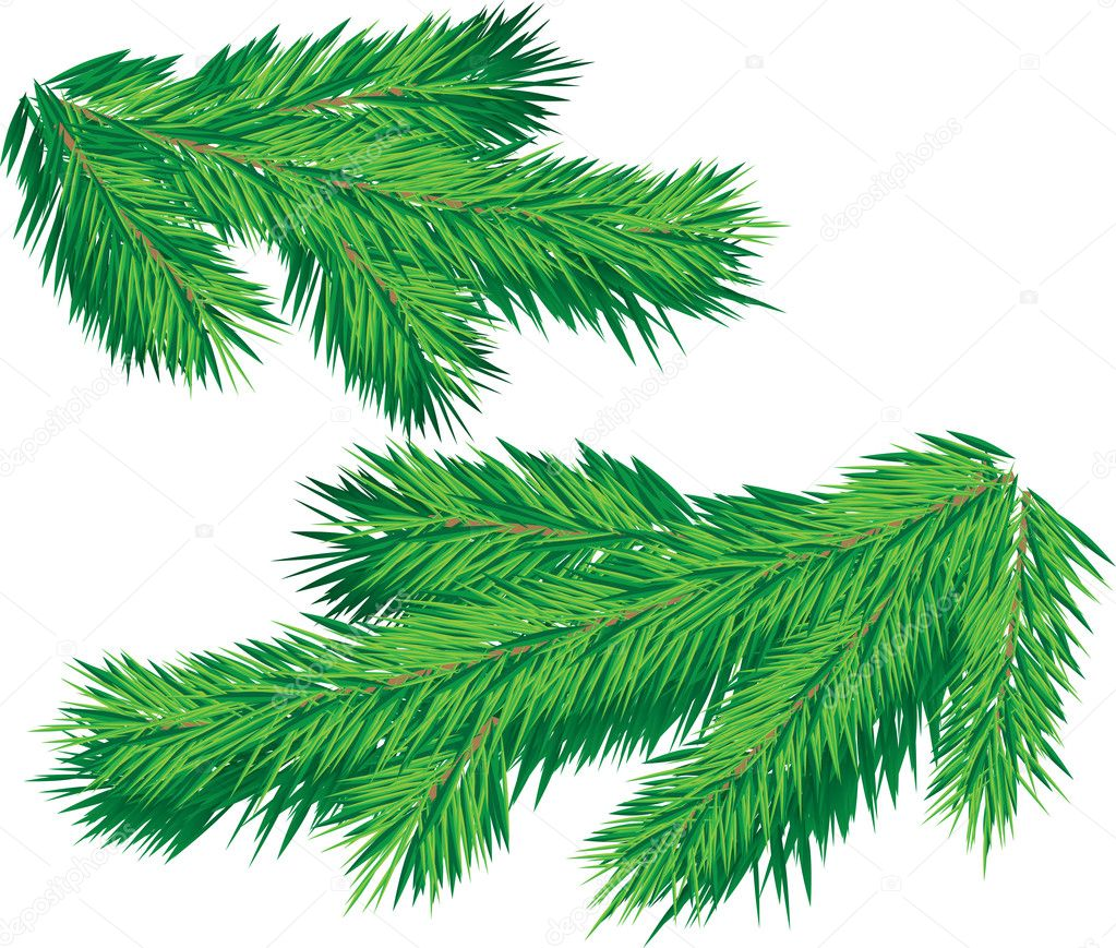 christmas tree branch vector - photo #1