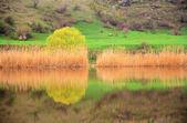 Jarní krajina na řece — Stock fotografie