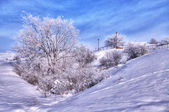 Vinterlandskap. hdr-bild — Stockfoto