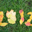 Stock Photo: Fallen red and yellow leafs making 2012 digits