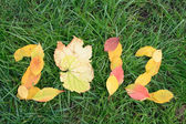 Fallen red and yellow leafs making 2012 digits — Stock Photo
