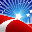 American flag stylized background — Stock Photo #8672897