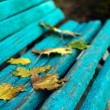 Autumn yellow leaves on bench — Stock Photo #9018860
