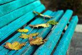 在长凳上的黄色树叶 — 图库照片