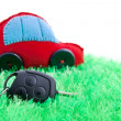 Ecological clean concept car on green grass — Photo