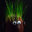 Grass on the head — Stock Photo