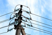 Elektrische Drähte — Stockfoto
