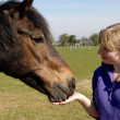 Girl Feeding her Horse - Stock Photo