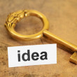 Idea and key concept — Stock Photo