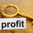 Stock Photo: Profit concept