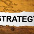 Strategy — Stock Photo #9384271