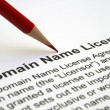 Domain name license agreement — Stock Photo #9399343