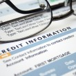 Credit information form — Stock Photo #9785308