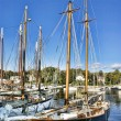 Stock Photo: Sailboats of Maine