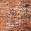 Brick wall background — Stock Photo #10202281